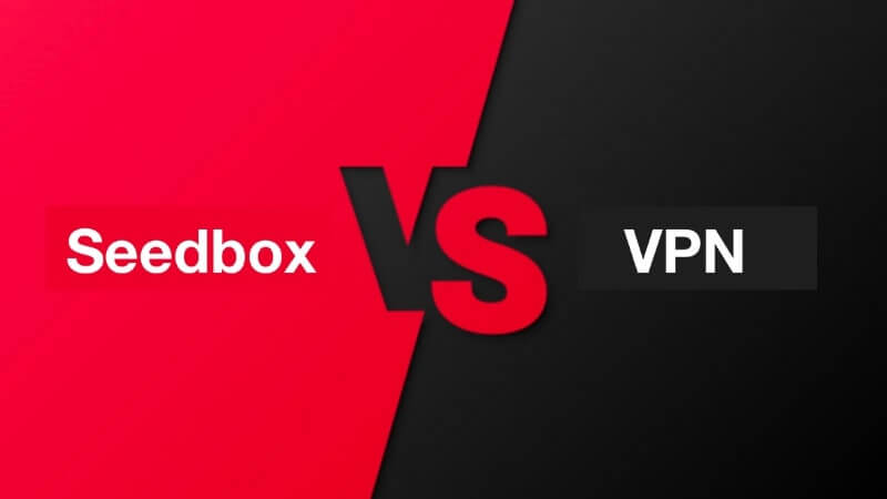 Seedbox or VPN